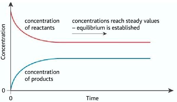 Concentration at equilibrium