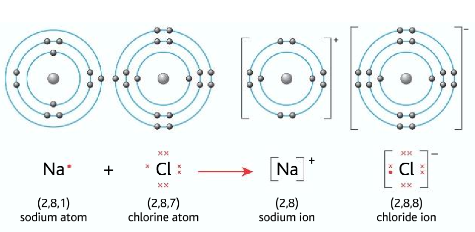 nacl dot-cross diagram